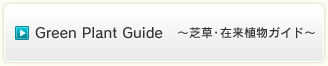 Green Plant Guide ~芝草・在来植物ガイド~