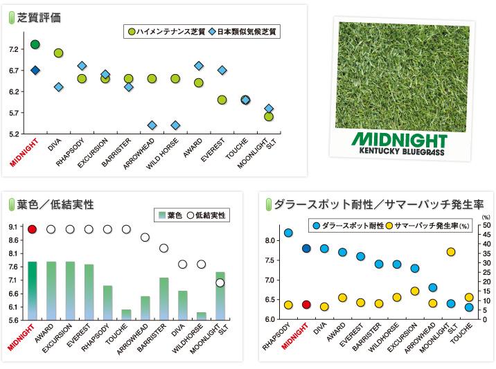 graph_midnight