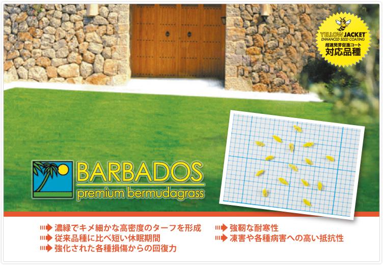 バルバドス,強靭な耐寒性,春の芽出し,秋の色持ち