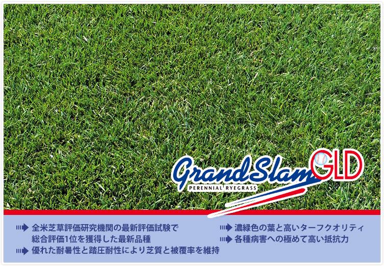 グランドスラムGLD,優れた耐暑性,各種病害抵抗性